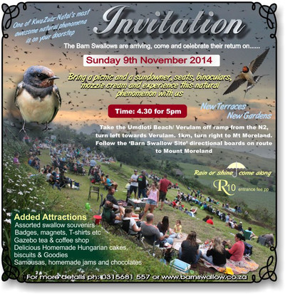 Barn_swallow_invitation_2014_the__3